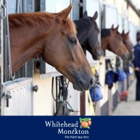 Livery yard qualifies for 100% relief from inheritance tax
