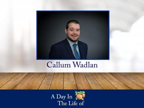 a-life-callum