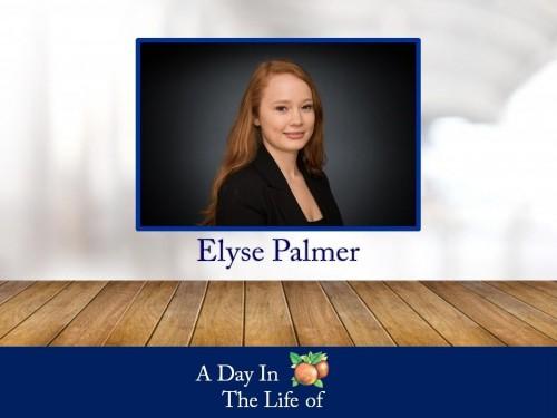 a-life-elyse