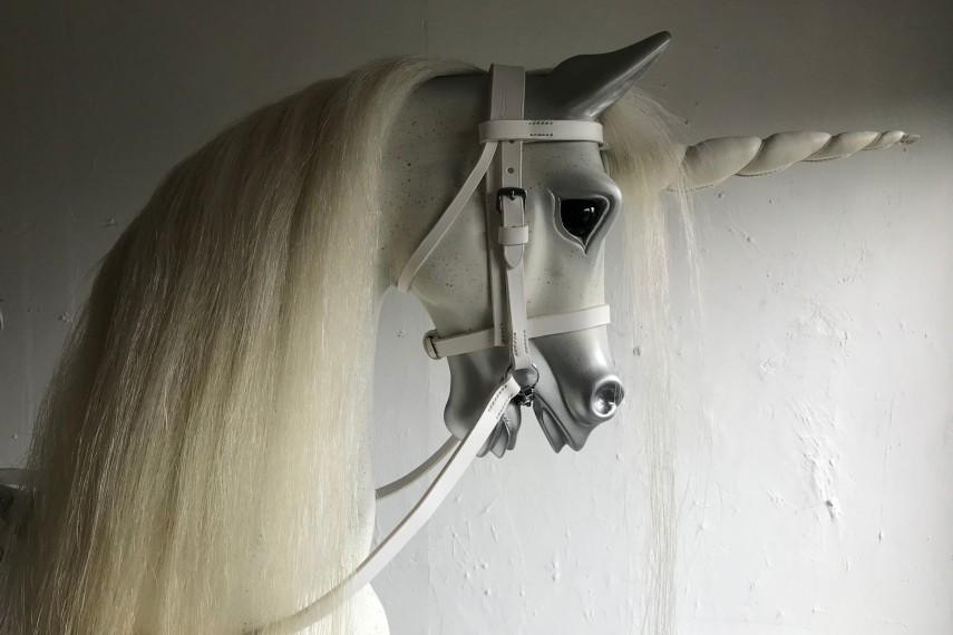 38-unicorn-left-1