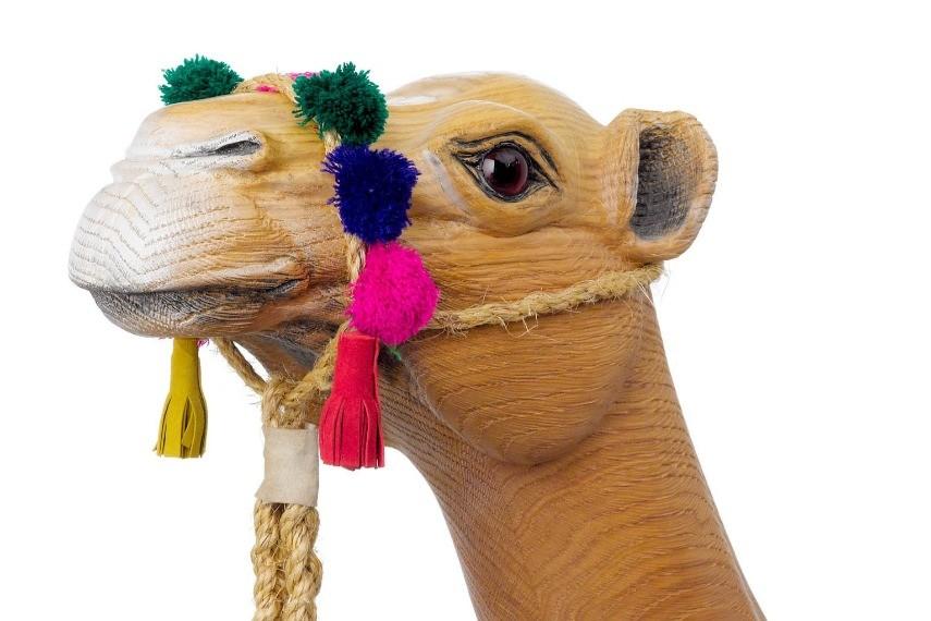 camel-headweb