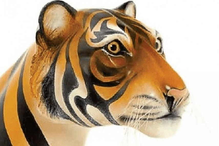 tiger-rocker-04-min