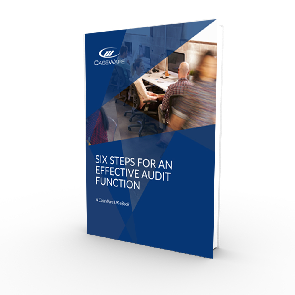 six-steps-to-an-effective-audit-function-fp.pdf