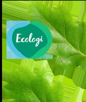 listing-we-ve-joined-offset-earth-_blog-